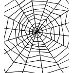 Spider & Spiders Web